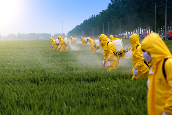 How do pesticides affect our health, are there disease related to ...