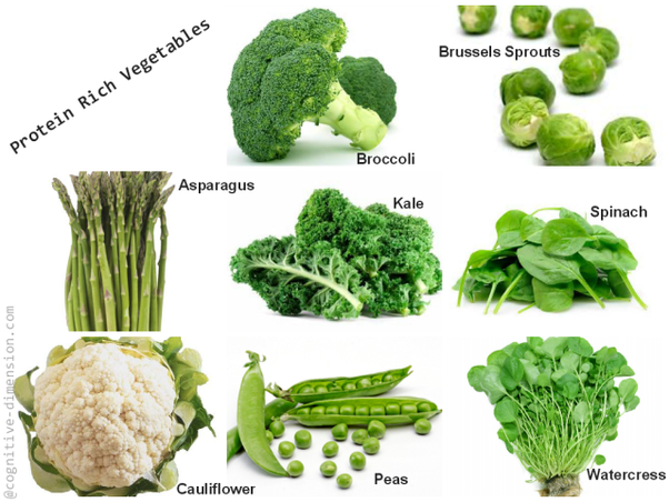 Which Vegetables Contain Protein Which vegetables have high protein quora make it into a salad add it to soup or casserole or blend a handful into a green smoothie knowing that you are getting your protein workwithnaturefo