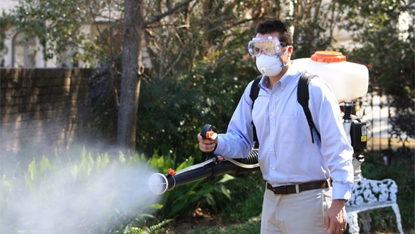 How effective are fogger machines against mosquitoes? - Quora