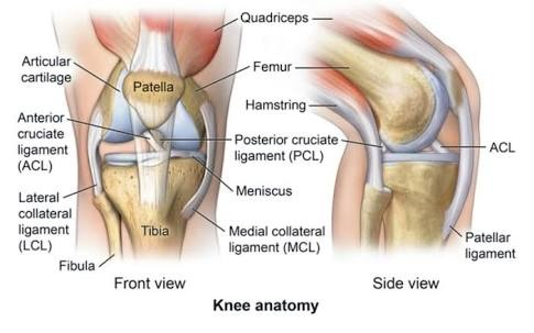 How Do Anterior Cruciate Ligament Tears Occur In Football Soccer