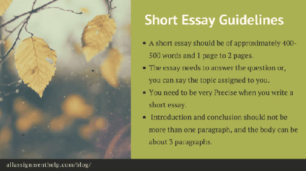 what is the definition of a short essay  quora following are the  crucial guidelines for writing a short essay
