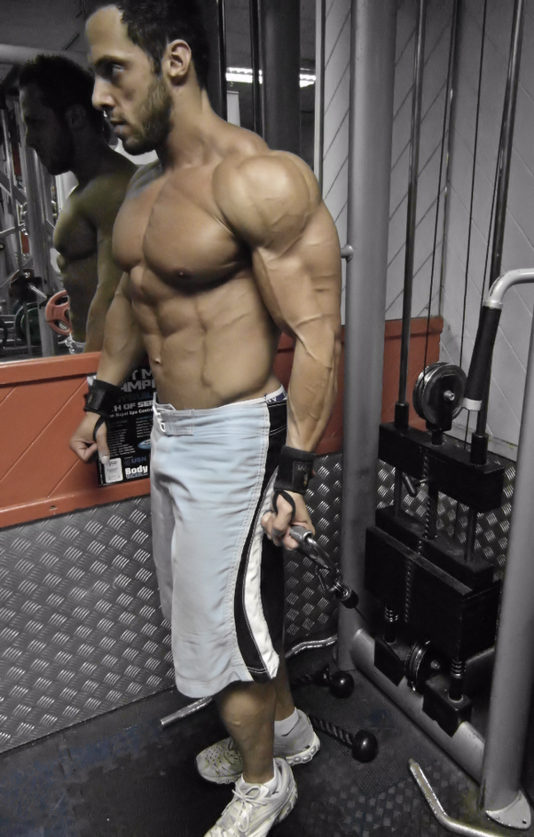 I am unable to gain muscle mass in my arms biceps triceps the resistance is coming from behind you so there is stress on the bicep throughout the entire exercise and the handle allows you to get altavistaventures Choice Image