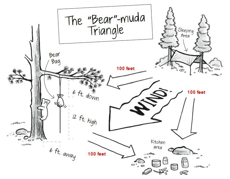 How to keep supplies safe from bear while camping - Quora