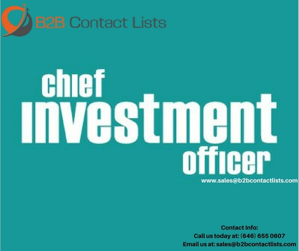 Where can I find the Chief Investment Officer or CFO contact details