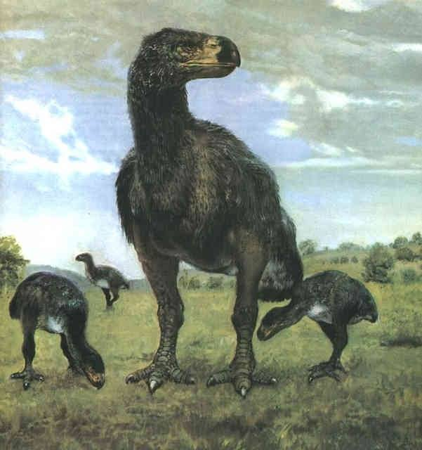 Around 212 Million Years Ago In What Is Now Northern New Mexico Early Dinosaurs Such