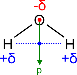 ... Oxygen Dipole Would Have An Ion Dipole Attraction To The Positive  Sodium Ions. This Allows Water To U201cpullu201d Ions Apart, Allowing Them To  Dissolve.