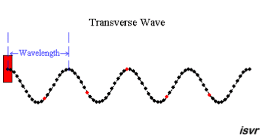 What Are The Examples Of Transverse Wave And Longitudinal Wave Quora