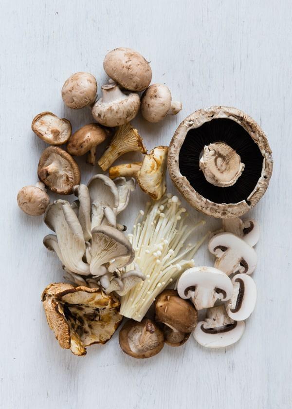 Network to Seekers Mushrooms-chestnuts