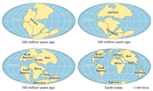 Why do we have north and south america when did it become this million years ago it is likely that instead of islands a full isthmus between the north and south american continents had already likely formed where sciox Image collections