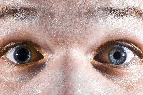 25 Amazing Facts About Green Eyes