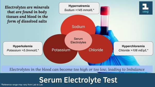 What Is Serum Electrolyte Quora