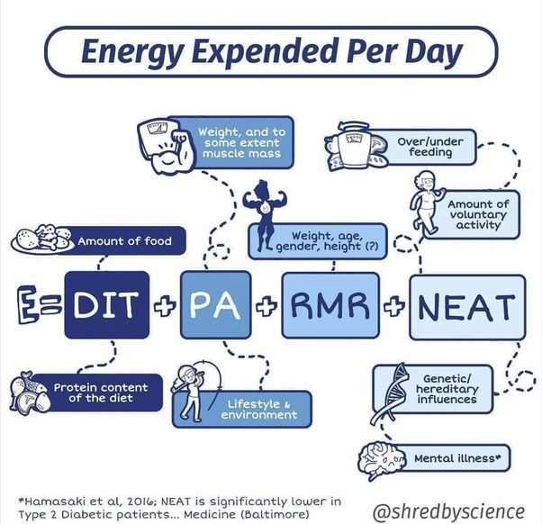 Be It Keto Intermittent Fasting Atkins OMAD And Excluding The Hormonal Stuff That Each Diet Has Diets Would Generally Require A Higher Expenditure