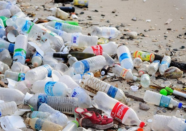 How many times can plastic bottles be used for drinking