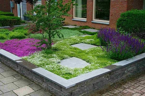 What is a creative and attractive alternative to a grass ...