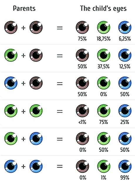 Is It Impossible For Someone With Green Eyes To Have Parents With