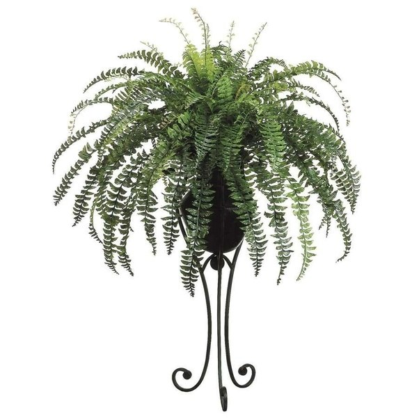 best office plants no sunlight. Main-qimg-11dae70baca4fd2bd06f6ff43190f60a-c Best Office Plants No Sunlight
