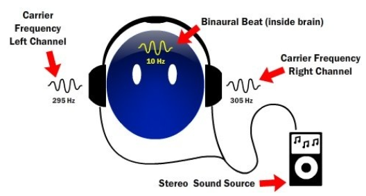 Which Binaural Beats Did You Use For Height Growth What Is The Link Quora