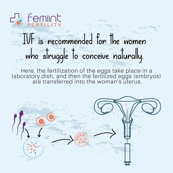 You Are Going To Have A Chance The Best Treatment In Istanbul With Most Successful Ivf Team Our Infertility Treatments Very High Success