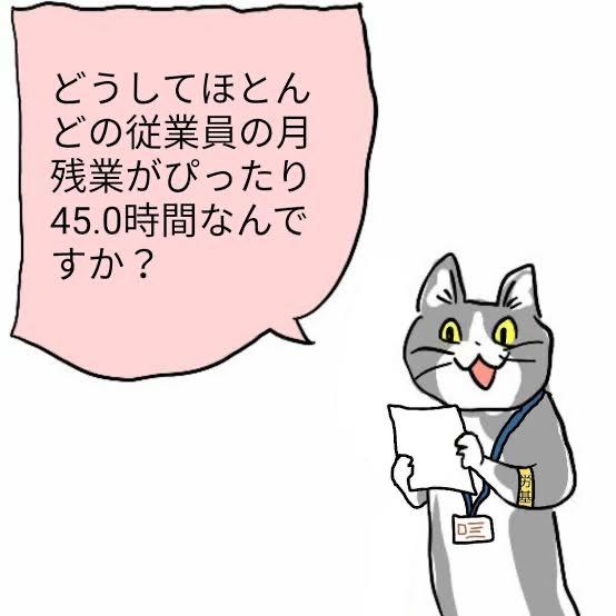 現場 猫 どうして