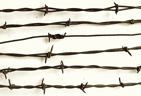 How is barbed wire dangerous? - Quora