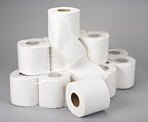 How many of you support the use of tissue papers in toilets