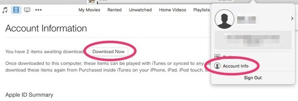 Why do iTunes movie rentals disappear when I restart iTunes after it ...