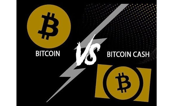 What is the difference between bitcoin and bitcoin cash quora difference between both bitcoin and bitcoin cash is so little that its hard to notice ccuart Gallery