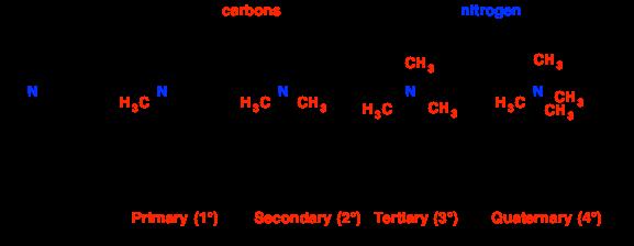 Secondary carbon atom
