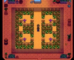 What is so good about Stardew Valley? - Quora