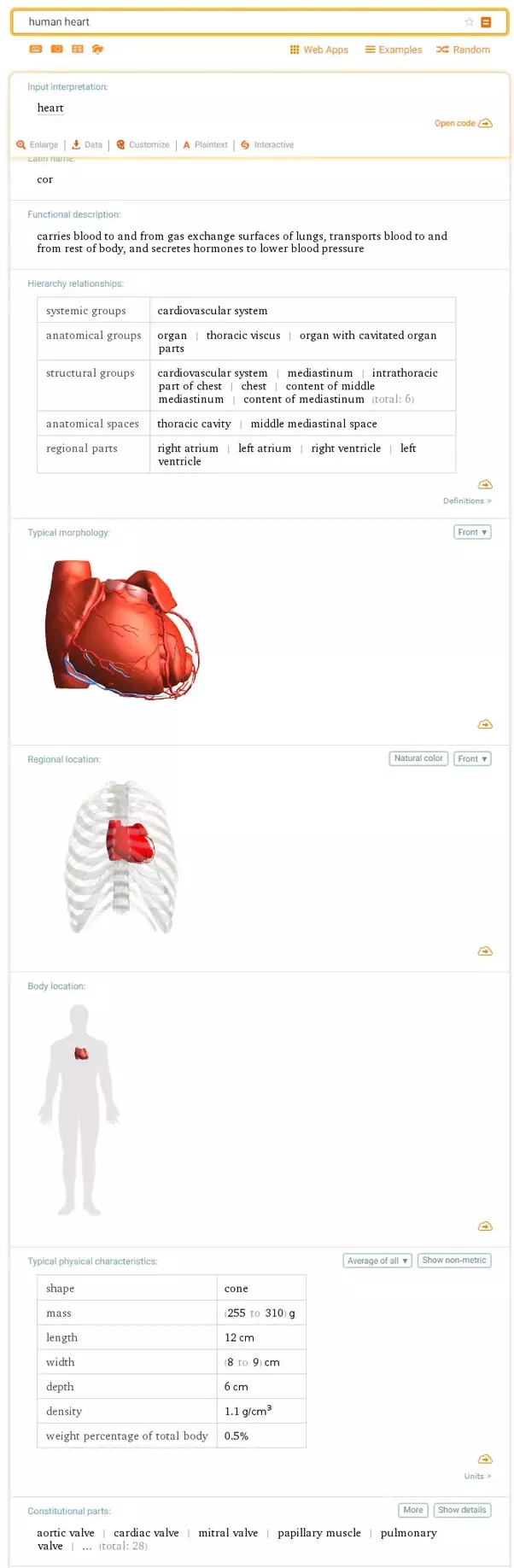 What Is The Best Way To Learn Human Anatomy And Physiology Quora