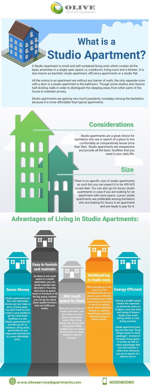 Here Is An Infographic By Best Serviced Apartment In Gurgaon Explaining Studio Apartments