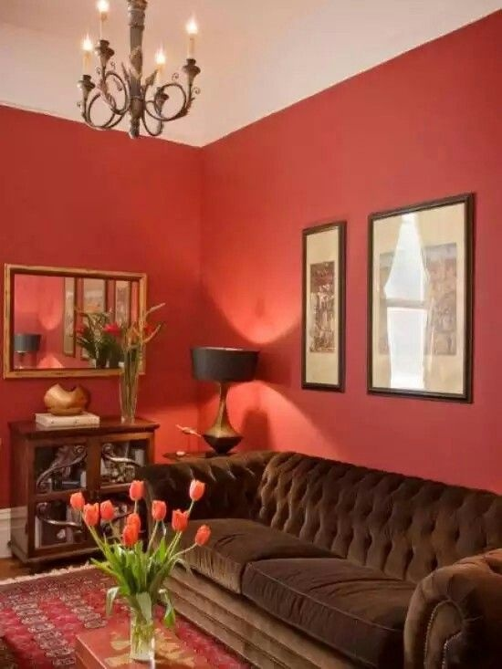 Which colour of sofa set will be the best against a red wall? - Quora
