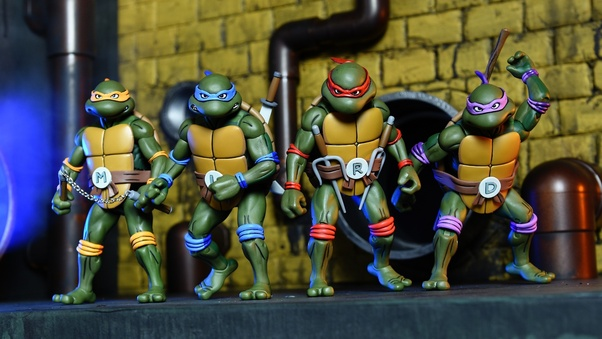 what are the teenage mutant ninja turtles names and colors quora