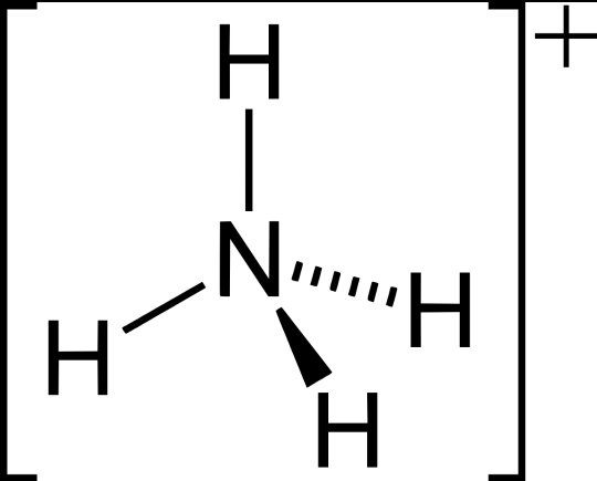 Give The Symbol And Valency Of Ammonium Quora