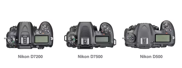Is a Nikon Mirrorless with F-Mount lenses possible? - Quora