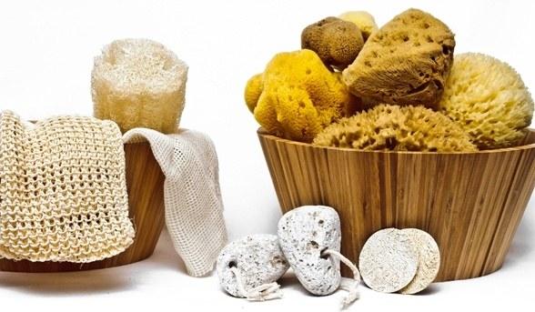 What are natural sea sponges? - Quora