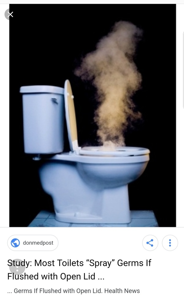 Surprising Is It Better To Flush The Toilets With The Lid Closed Quora Onthecornerstone Fun Painted Chair Ideas Images Onthecornerstoneorg