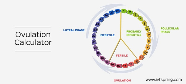 What is an ovulation calculator? Quora.