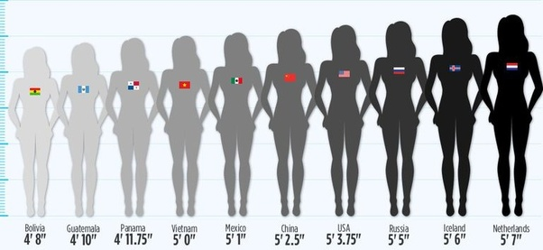 What is the average height of a american man