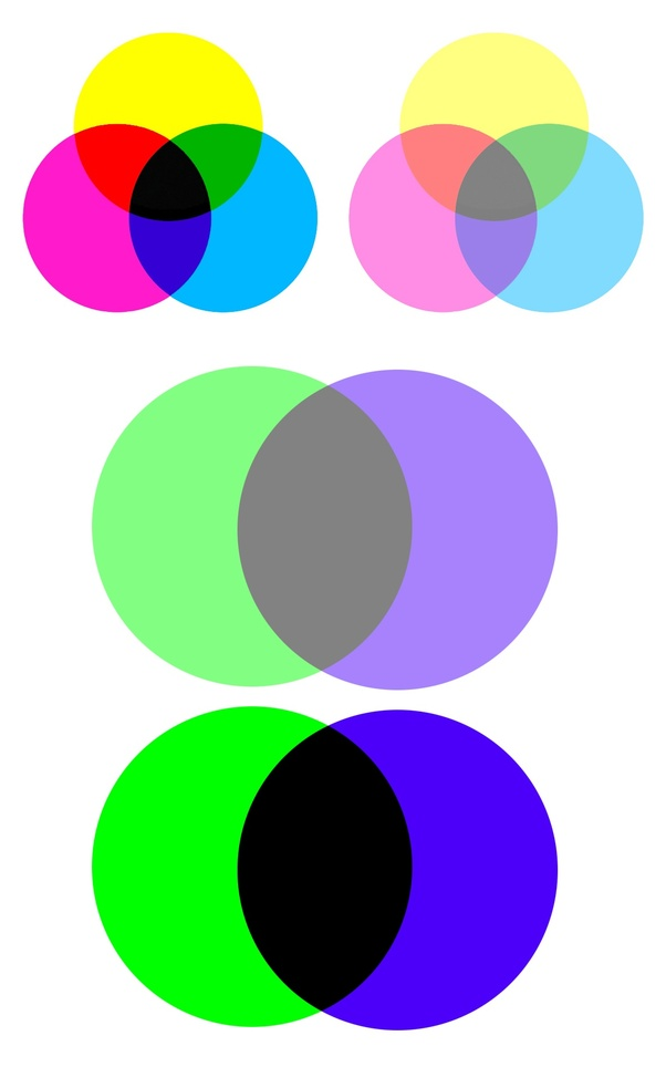 What Do Green And Purple Make Quora,What Is The Best Color To Paint Paneling