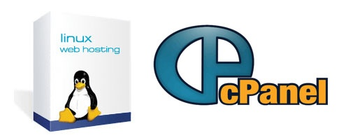 linux web hosting with cpanel