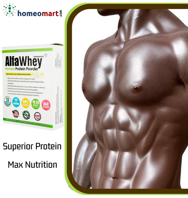 What is the best protein/powder to gain weight or muscle