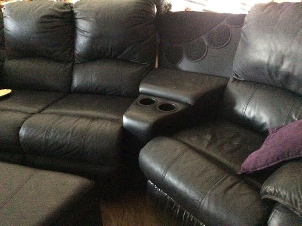 best true cat obnoxious stretch benefit of pelt furniture