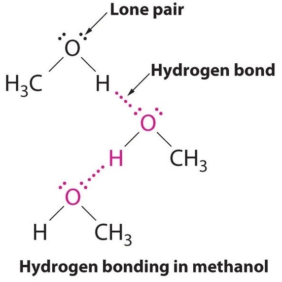 Why Do Carboxylic Acids Have Stronger Intermolecular Forces Than