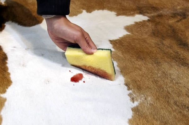 How to clean a cowhide rug - Quora