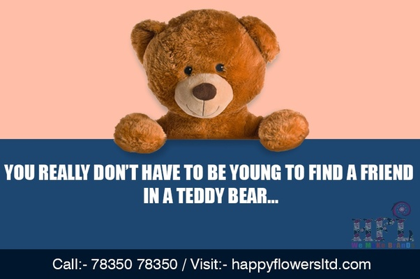 Why Do Girls Like Teddy Bears So Much Is There A Scientific Reason