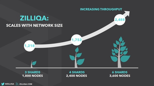 What is Zilliqa going to be worth in one year? - Quora
