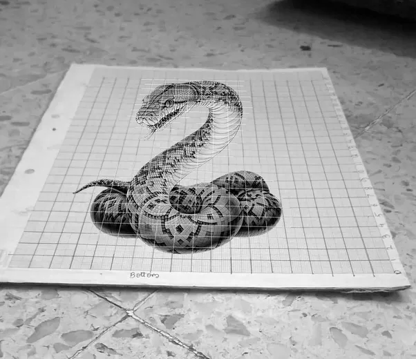 How to draw 3d sketches quora if you are using an actual object place the object on the graph sheet and take a picture as i chose a snake as a reference i could not use the actual thecheapjerseys Gallery