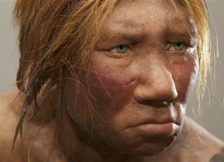 What Skin Colour Did Neanderthals Have Quora