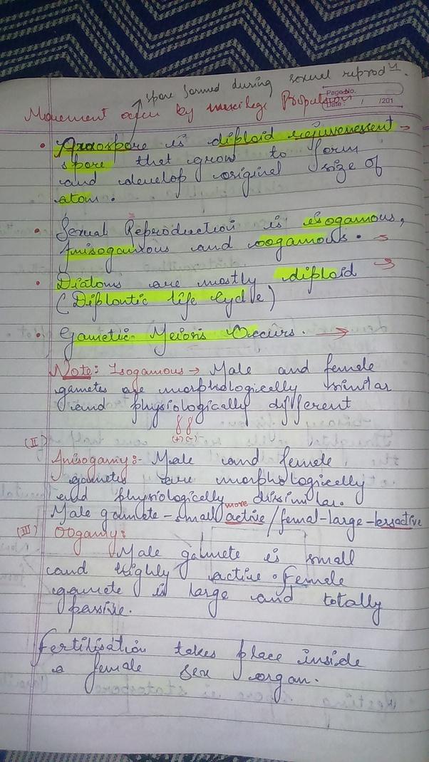 Lovely Hindi Homework Sheets Alphabet Worksheet Jha Photos - Math ...